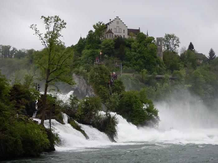 «Под ивою». Рейнский водопад. Фото: Николай Горбунов