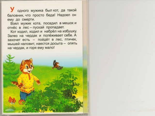 Иллюстрация 1 из 5 для Книжка-непромокашка: Кот и лиса | Лабиринт - книги. Источник: _Елена_