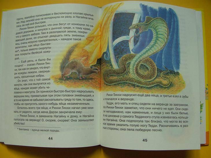 Иллюстрация 1 из 6 для Рикки-Тикки-Тави - Редьярд Киплинг | Лабиринт - книги. Источник: мама малыша