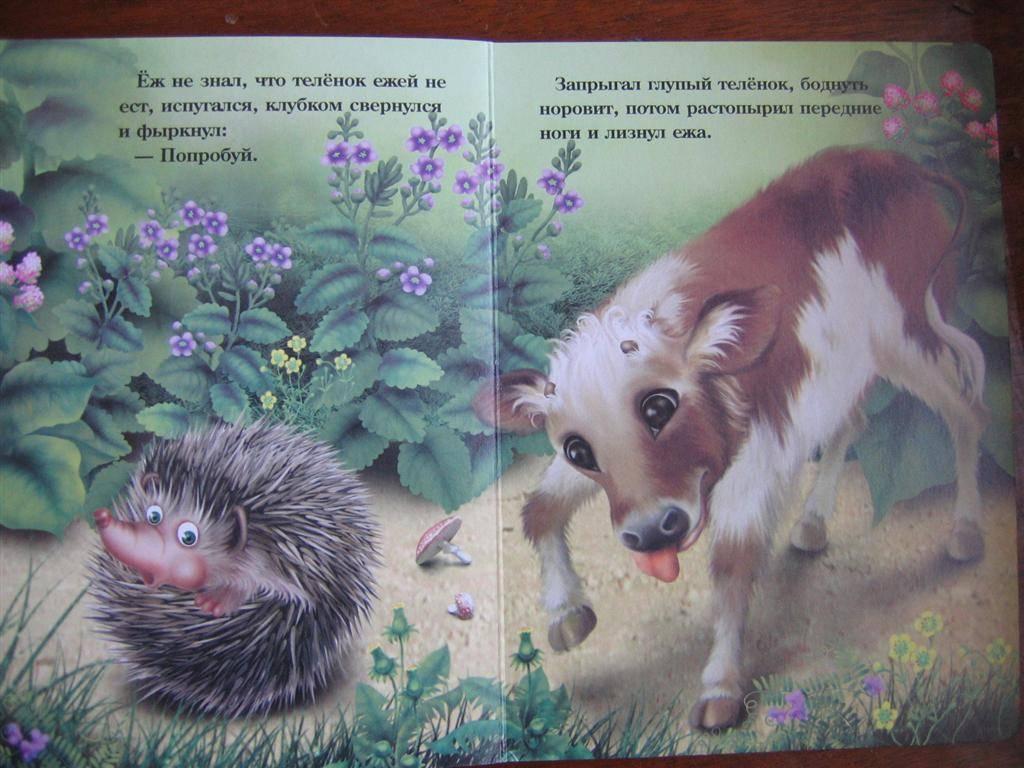 Иллюстрация 1 из 2 для Храбрый еж | Лабиринт - книги. Источник: Крошка Сью