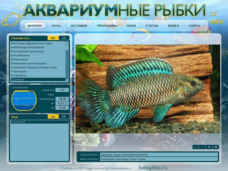 Иллюстрация 1 из 2 для Аквариумные рыбки 2.0 (DVDpc) | Лабиринт - софт. Источник: МЕГ