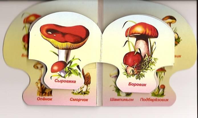 Иллюстрация 1 из 4 для Съедобные грибы   Лабиринт - книги. Источник: Бойцова  Ольга Евгеньевна