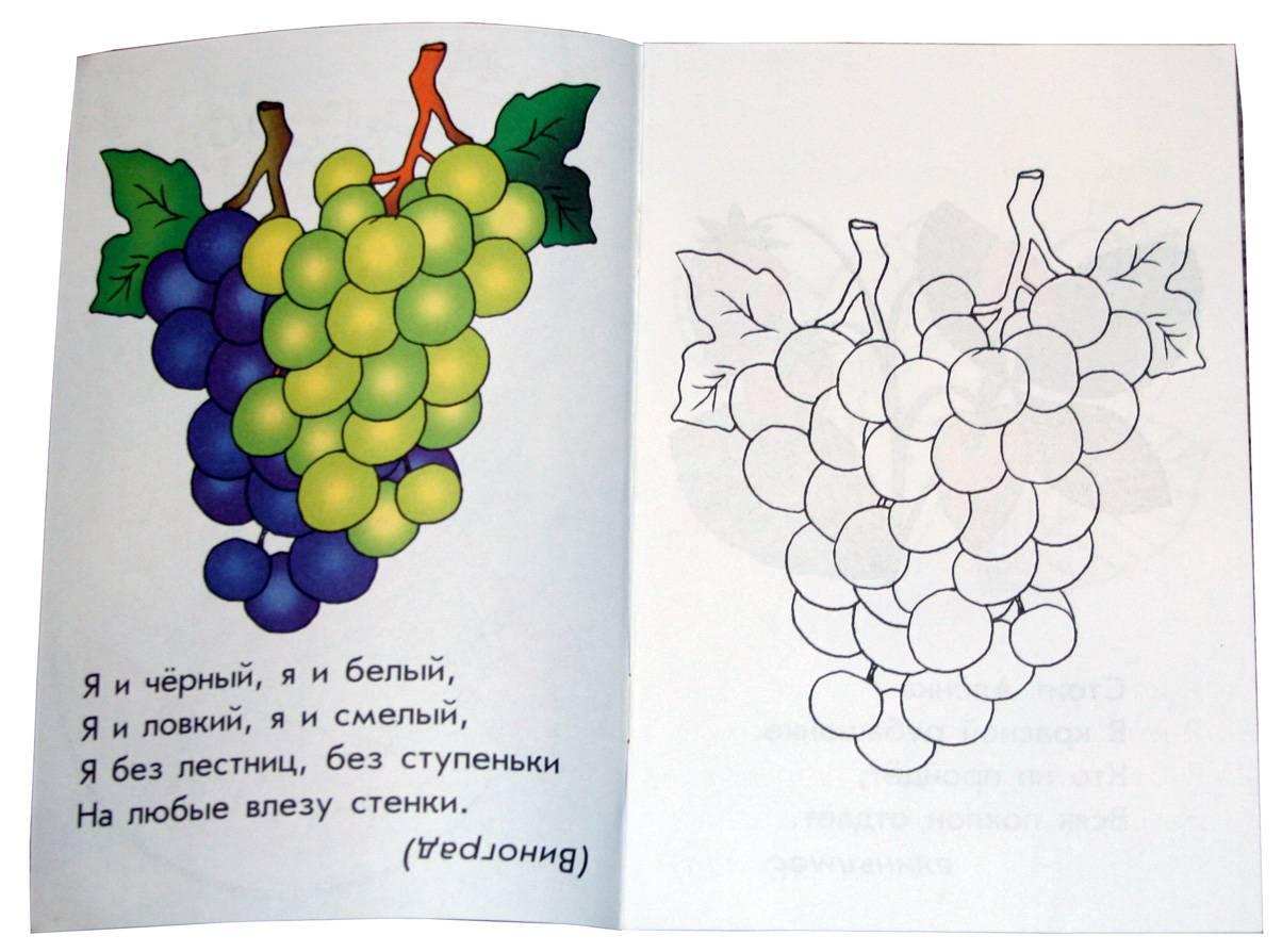 Иллюстрация 1 из 2 для Во саду ли, в огороде: Раскраска для детей 4-5 лет | Лабиринт - книги. Источник: *Мария*