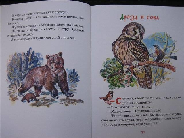 Сладков как медведь сам себя напугал чему учит
