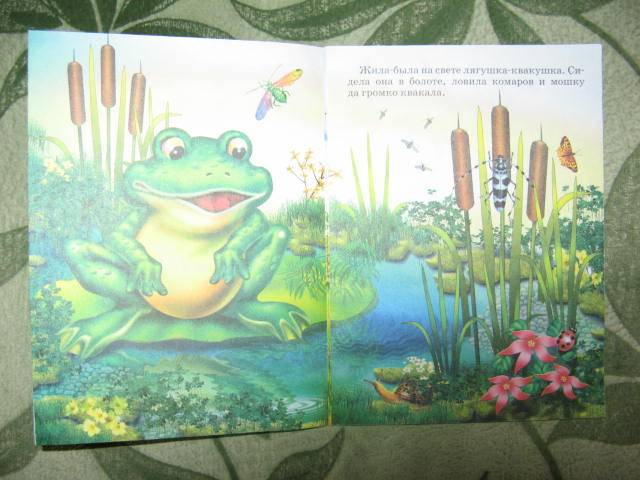 Иллюстрация 1 из 7 для Лягушка-путешественница | Лабиринт - книги. Источник: libe