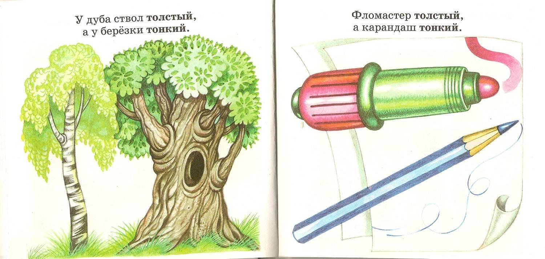 Иллюстрация 1 из 2 для Противоположности - Юлия Соколова | Лабиринт - книги. Источник: farnor