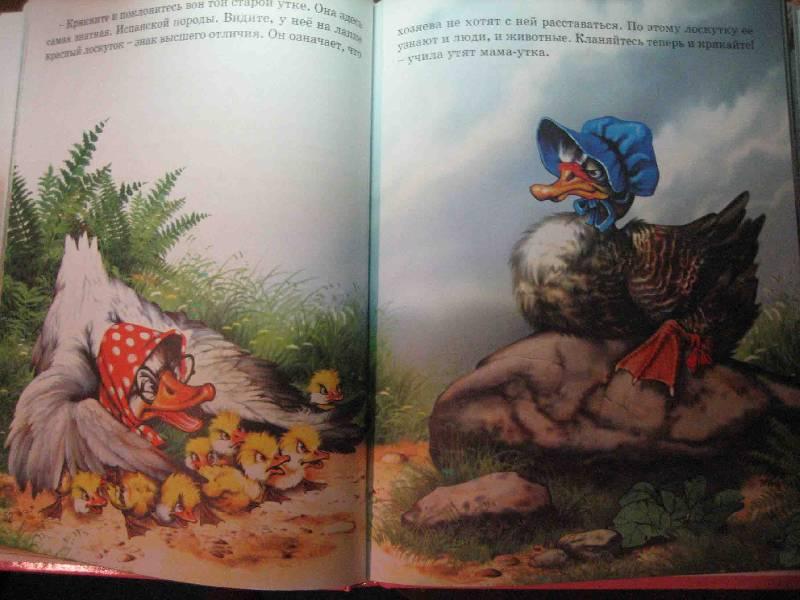 Иллюстрация 1 из 2 для Любимые сказки. Г.Х. Андерсен - Ханс Андерсен   Лабиринт - книги. Источник: Трухина Ирина