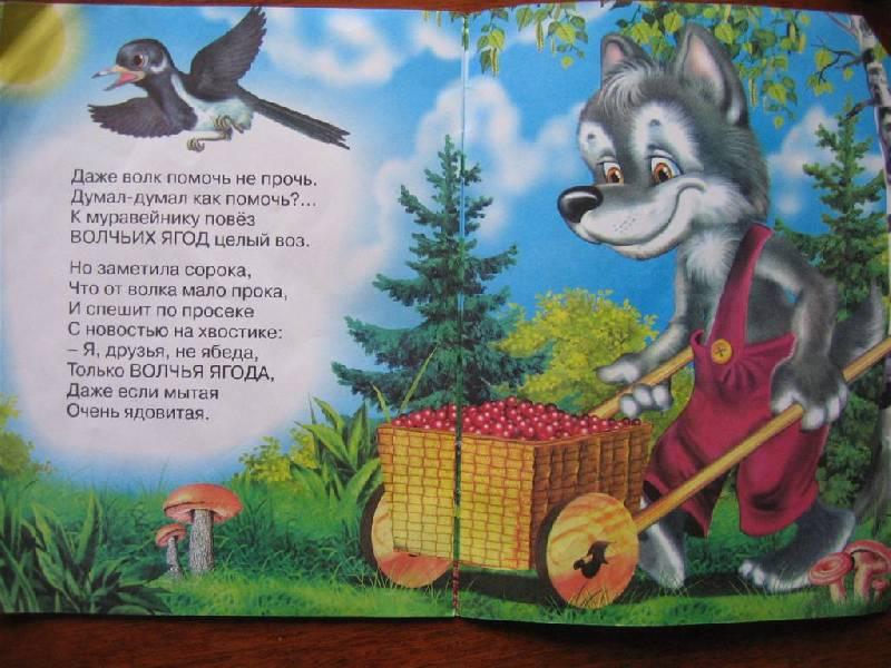 Иллюстрация 1 из 10 для Зеленая аптека - Петр Синявский   Лабиринт - книги. Источник: Крошка Сью