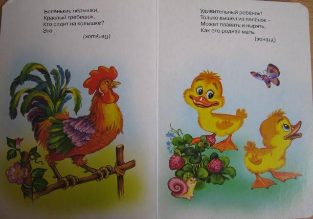 Иллюстрация 1 из 3 для Мой домашний зоопарк | Лабиринт - книги. Источник: Зарудная Нина Георгиевна