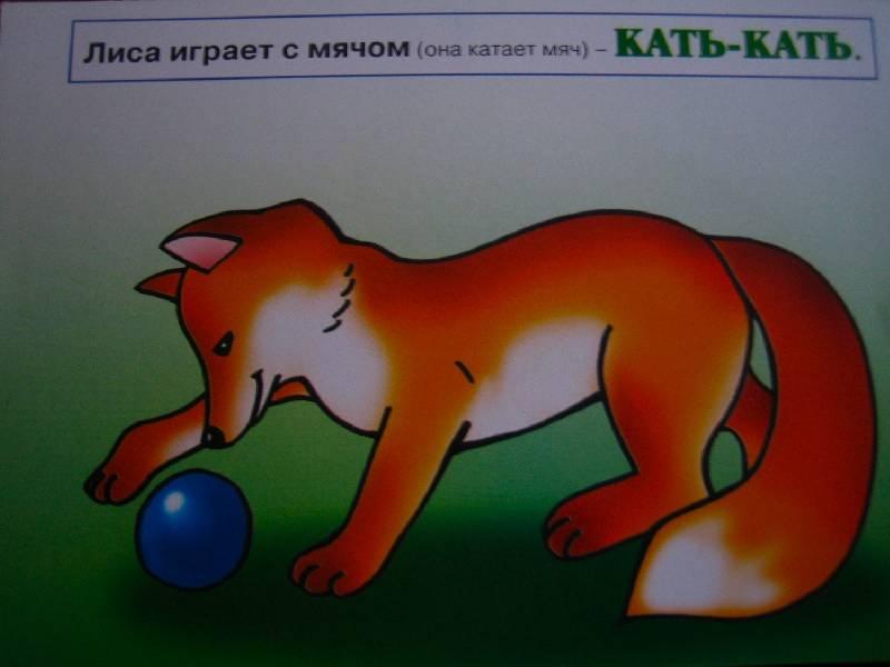 Иллюстрация 1 из 2 для Погремушка: Знакомство с домашними и дикими животными   Лабиринт - книги. Источник: Marini