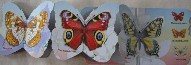 Иллюстрация 1 из 2 для Бабочки | Лабиринт - книги. Источник: Зарудная Нина Георгиевна