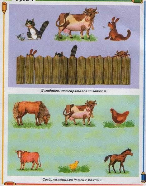 Иллюстрация 1 из 9 для Учимся рисовать. - Олеся Жукова   Лабиринт - книги. Источник: Спанч Боб