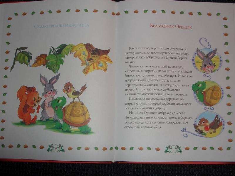 Иллюстрация 1 из 5 для Сказки Волшебного Леса | Лабиринт - книги. Источник: sher
