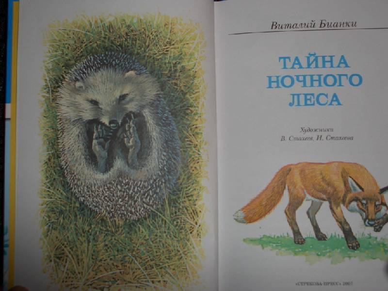 Иллюстрация 1 из 3 для Тайна ночного леса - Виталий Бианки | Лабиринт - книги. Источник: sher