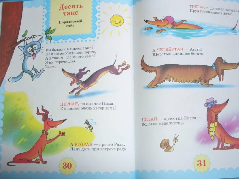 Иллюстрация 1 из 6 для Моя любимая арифметика - Маша Лукашкина | Лабиринт - книги. Источник: sher
