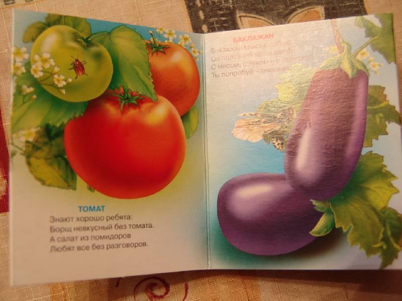 Книжка про овощи своими руками 91
