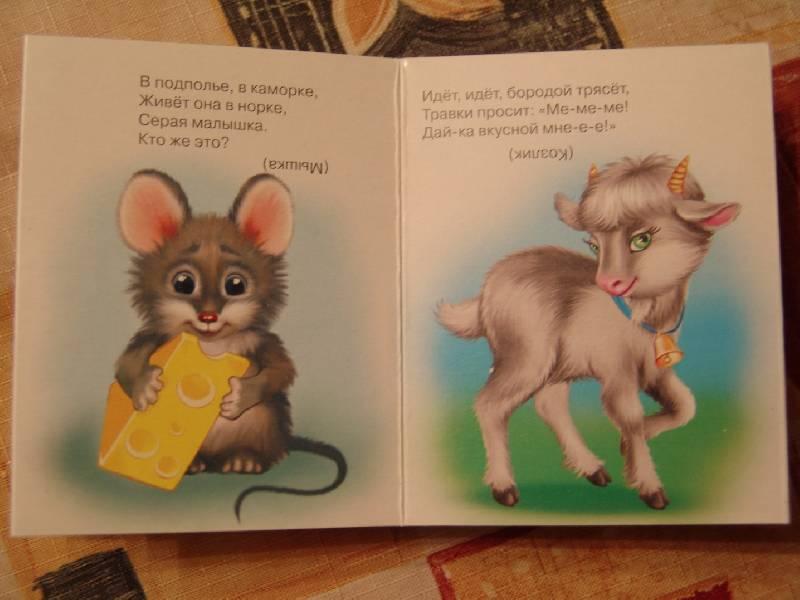 Иллюстрация 1 из 2 для Мой домашний зоопарк   Лабиринт - книги. Источник: Лаванда