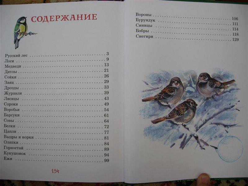 Иллюстрация 1 из 17 для Иван Шишкин - Людмила Китаева | Лабиринт - книги. Источник: Юта