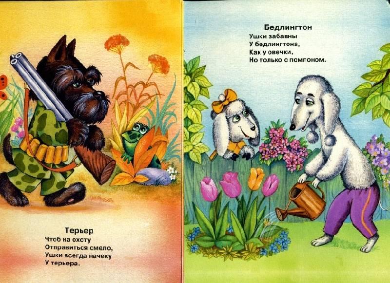 Иллюстрация 1 из 2 для У кого какие ушки - Светлана Гвиниашвили | Лабиринт - книги. Источник: Варвара