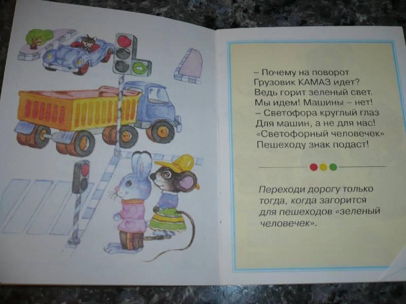 Иллюстрация 1 из 2 для Правила перехода улицы - Марина Дружинина | Лабиринт - книги. Источник: Домбиблиотека