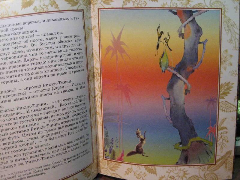 Иллюстрация 1 из 36 для Рикки-Тикки-Тави - Редьярд Киплинг | Лабиринт - книги. Источник: Трухина Ирина