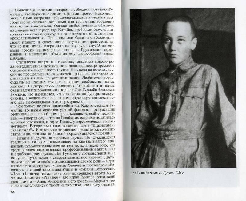 Иллюстрация 1 из 22 для Лев Гумилев - Валерий Демин   Лабиринт - книги. Источник: Panterra