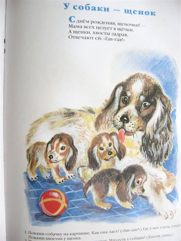 Иллюстрация 1 из 6 для У кого какая мама | Лабиринт - книги. Источник: Юта