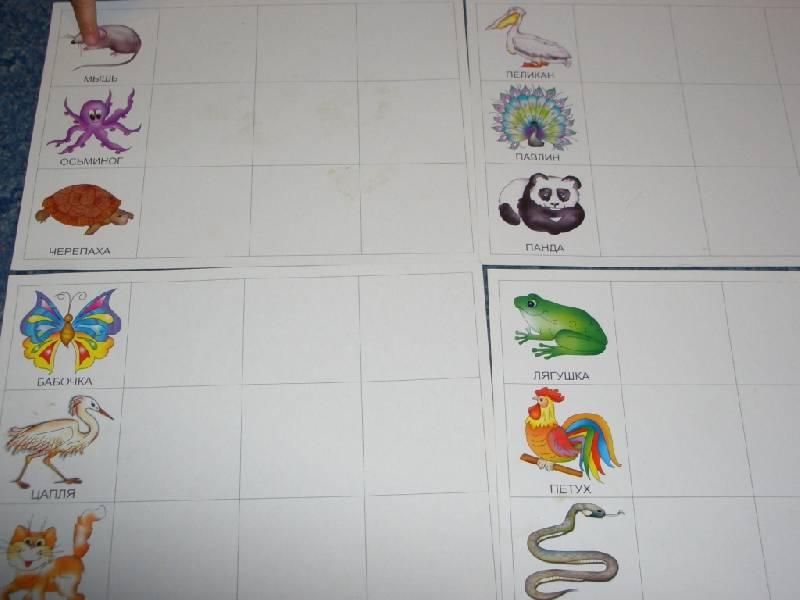 Иллюстрация 1 из 2 для Крылья, лапы и хвосты: Лото для детей от 3-х лет и старше (С-320)   Лабиринт - книги. Источник: sher