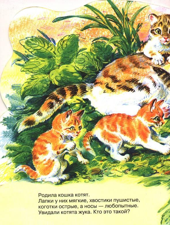 Иллюстрация 1 из 2 для Веселые котята | Лабиринт - книги. Источник: OOlga