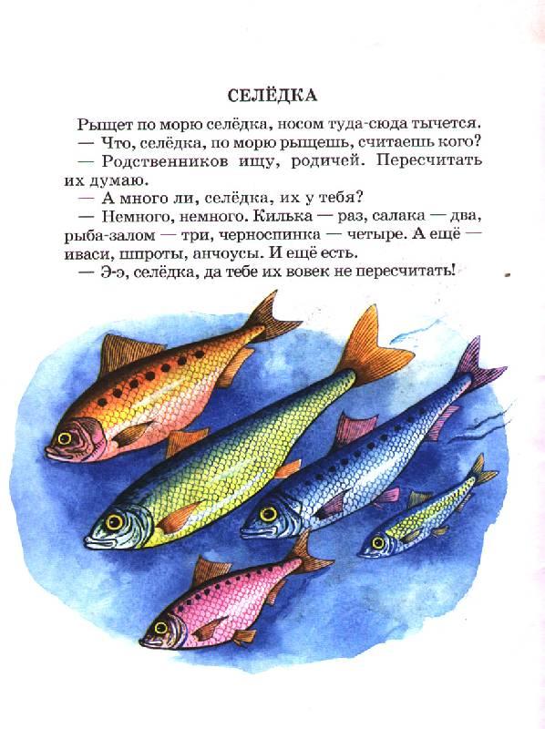 Иллюстрация 1 из 3 для В холодном море - Святослав Сахарнов | Лабиринт - книги. Источник: OOlga