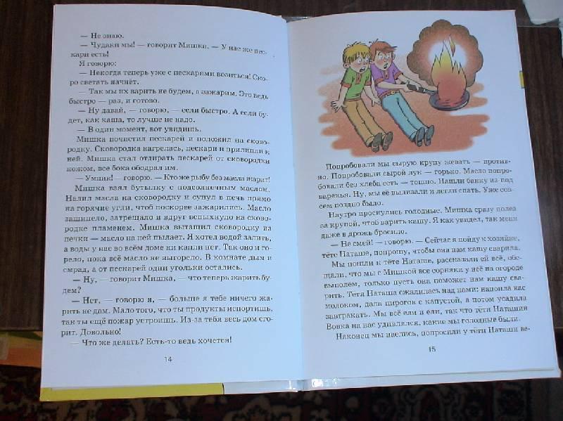 Иллюстрация 1 из 2 для Мишкина каша: Рассказы - Николай Носов | Лабиринт - книги. Источник: Лаванда