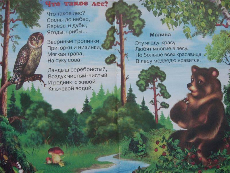 Иллюстрация 1 из 8 для Родная природа - Владимир Степанов | Лабиринт - книги. Источник: Юта