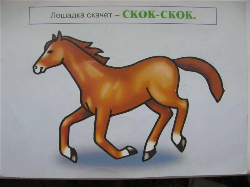 Иллюстрация 1 из 4 для Скок и прыг. Речь, домашние животные 0-2г | Лабиринт - книги. Источник: Юта