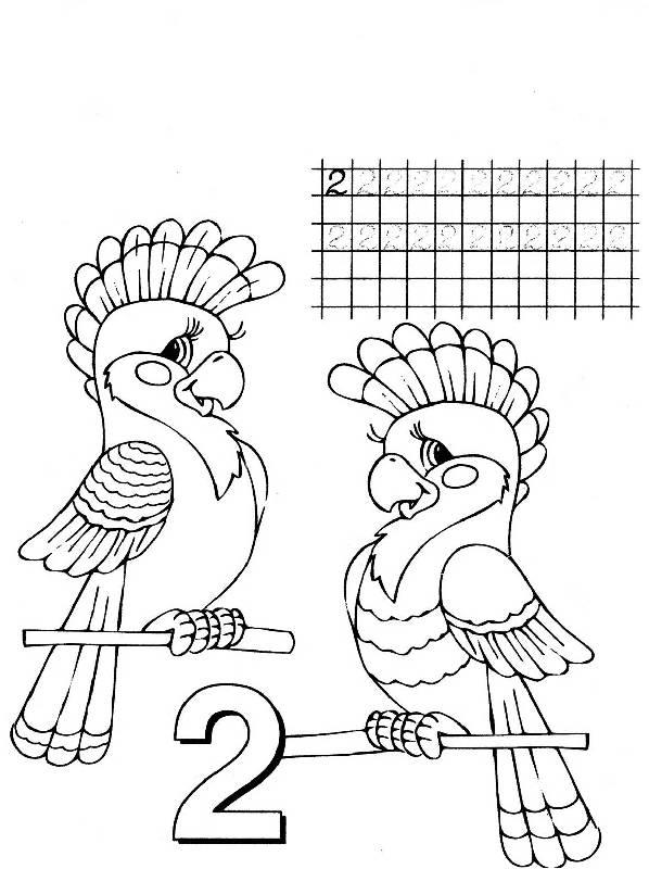 Иллюстрация 1 из 7 для Учим цифры (Сумка-вырубка)   Лабиринт - книги. Источник: Лана