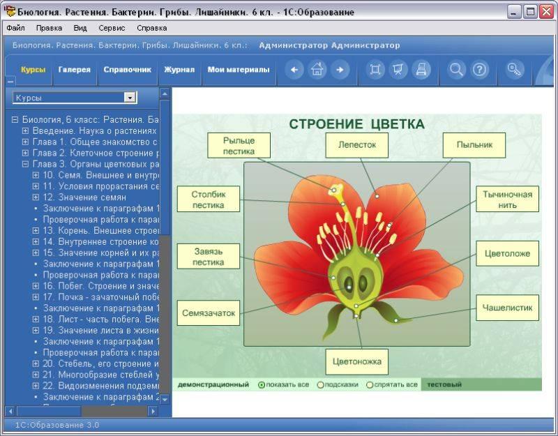 Иллюстрация 1 из 4 для Биология 6 класс. Растения. Бактерии (2CDpc) | Лабиринт - книги. Источник: Юлия7