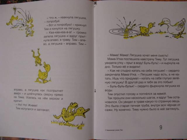 Иллюстрация 1 из 10 для Знаменитый утенок Тим: Сказка - Энид Блайтон | Лабиринт - книги. Источник: Татьяна А.