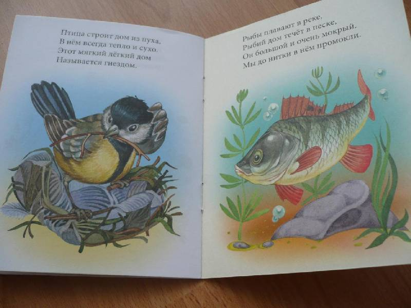 Иллюстрация 1 из 8 для Какие разные дома! - Наталья Томилина | Лабиринт - книги. Источник: Домбиблиотека