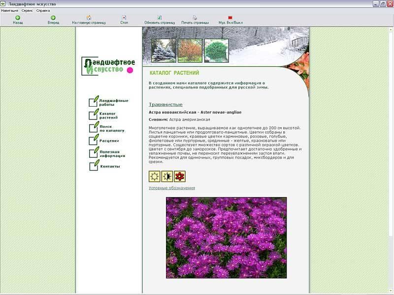 Иллюстрация 1 из 4 для Каталог растений для ландшафтного дизайна. Травянистые растения | Лабиринт - софт. Источник: Юлия7