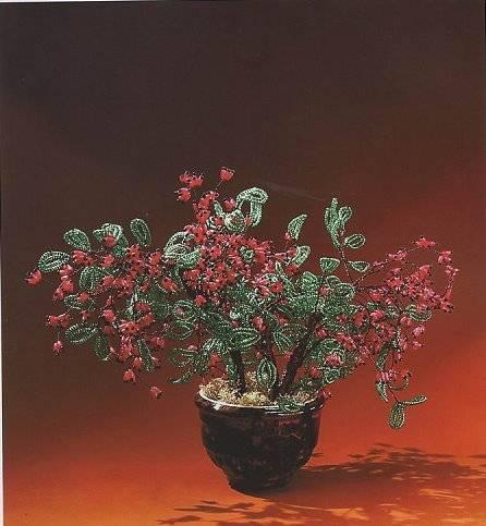 БАРБАРИС.  Схема.  Кстати, правильно ли его помещать в цветы? все-таки куст. от Елены Стольной.