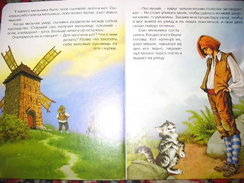 Иллюстрация 1 из 4 для Кот в сапогах - Шарль Перро   Лабиринт - книги. Источник: Мельникова  Юлия Андреевна