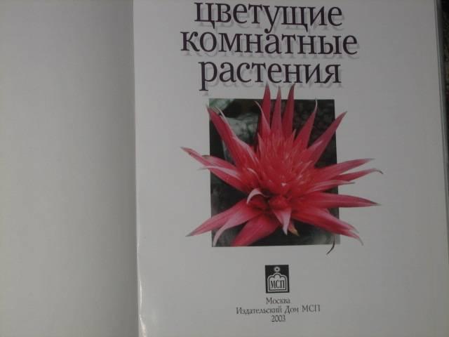 Иллюстрация 1 из 9 для Цветущие комнатные растения - В. Матюшина | Лабиринт - книги. Источник: МЕГ