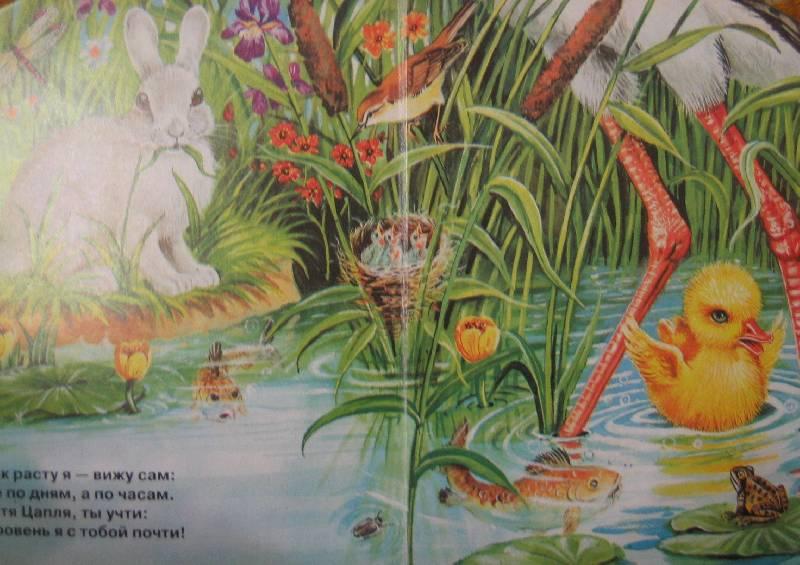 Иллюстрация 1 из 2 для Утенок на прогулке | Лабиринт - книги. Источник: Е.  Анна В.