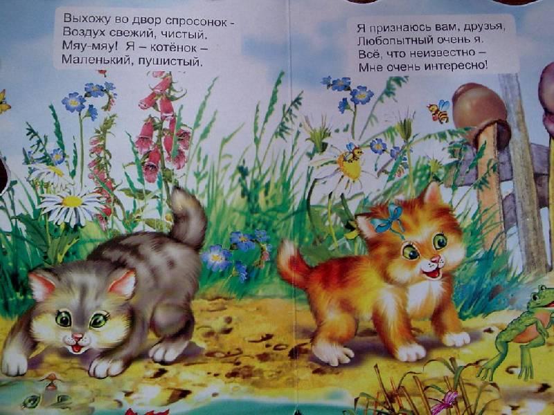 Иллюстрация 1 из 3 для Зверята: Котенок - Елена Котова   Лабиринт - книги. Источник: Honny