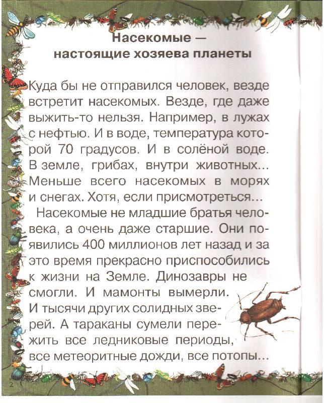 Иллюстрация 1 из 10 для Насекомые - Ольга Колпакова | Лабиринт - книги. Источник: Еделева Юлия Андреевна