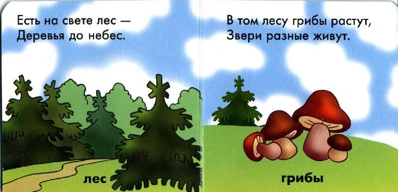 Иллюстрация 1 из 2 для В лесу | Лабиринт - книги. Источник: РИВА