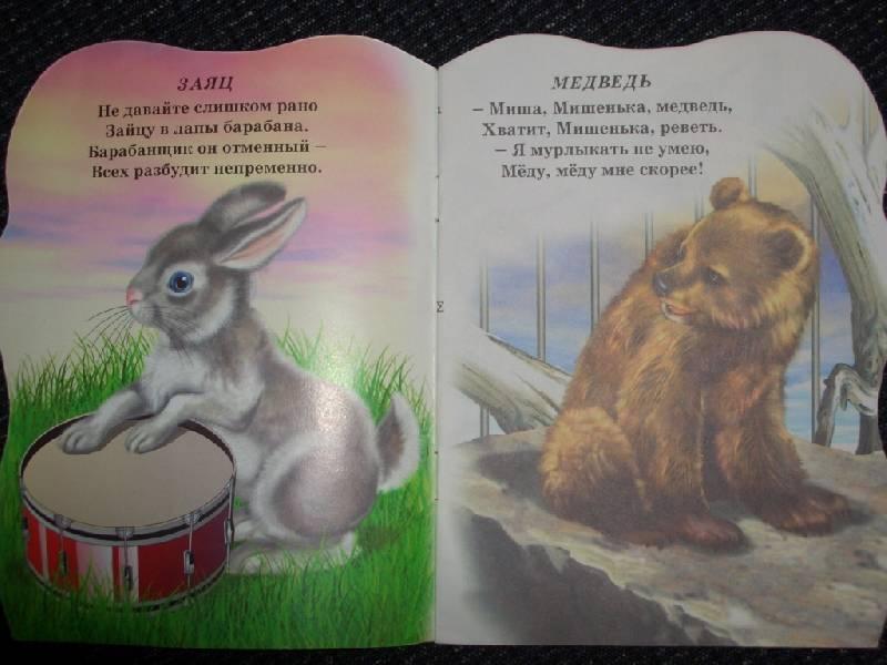 Иллюстрация 1 из 3 для В зоопарке №2 (медведь) - Елена Михайленко | Лабиринт - книги. Источник: sher
