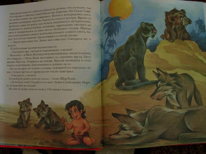 Иллюстрация 1 из 30 для Маугли - Редьярд Киплинг | Лабиринт - книги. Источник: Geny