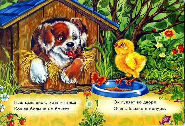 Иллюстрация 1 из 5 для Любимые зверята: Цыпленок - С. Зайцева   Лабиринт - книги. Источник: Machaon