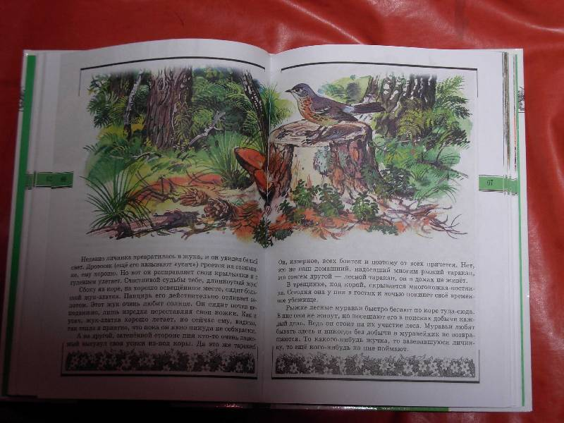 Великан на поляне учебник читать онлайн бесплатно
