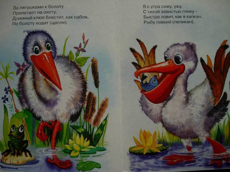 Иллюстрация 1 из 5 для Загадки про птиц | Лабиринт - книги. Источник: Geny